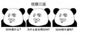 SD-WAN框架介绍