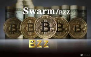 swarm bzz配置用哪种好?带宽、IP、CPU、硬盘、内存什么最重要?